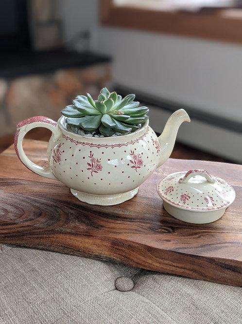 Red Floral Tea Pot