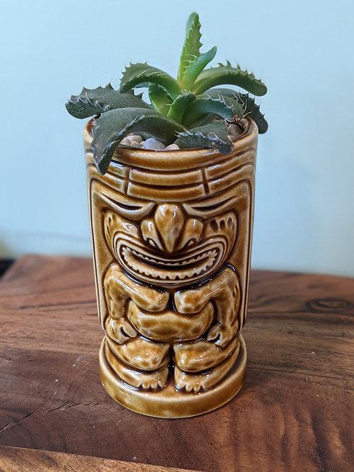 Tiki Hawaiian Cup