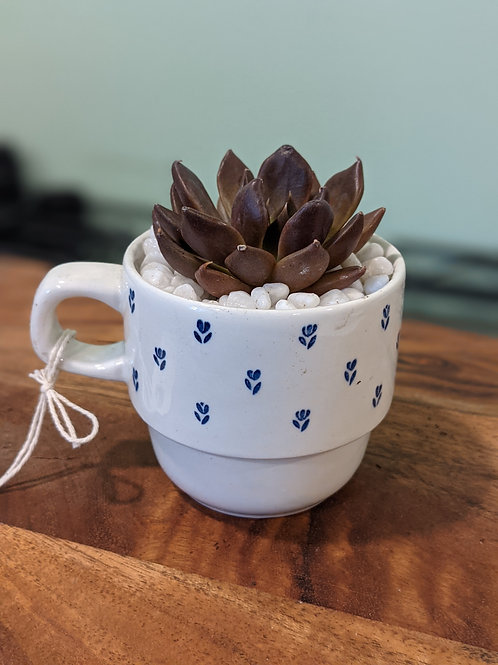 Blue Flower English Tea Cup