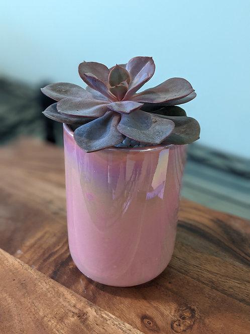 Iridescent Pink Jar