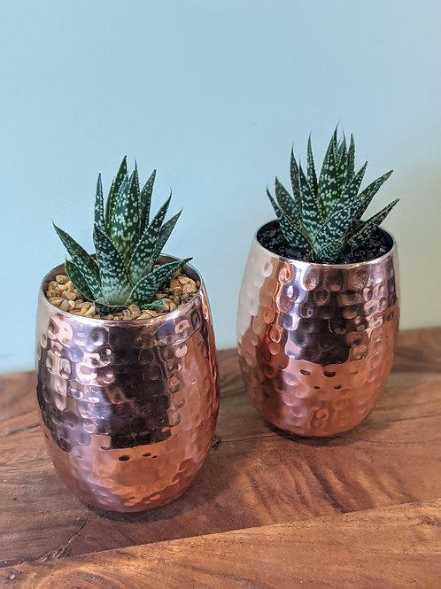 "Copper ""Pineapple"" Inspired Arrangement"