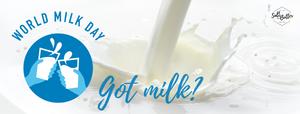 World Milk Day 2020, milk being poured at Salt and Butter Soap Kitchen for handmade artisan soaps with goat's milk, buttermilk, coconut milk, and coconut cream in South Jordan, Utah.