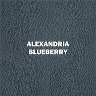 Alexandria Blueberry.jpg