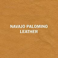 Navajo Palomino.jpg
