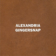 ALEXANDRIA GINGERSNAP.jpg