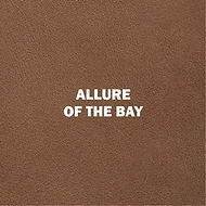 ALLURE OF THE BAY.jpg