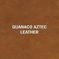Guanaco Aztec.jpg