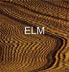 Elm.jpg