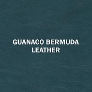 Guanaco Bermuda.jpg