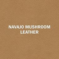 Navajo Mushroom.jpg
