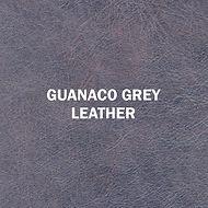 Guanaco Grey.jpg
