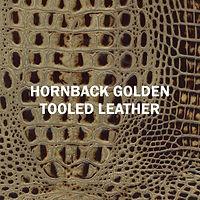 Designer Hornback Golden.jpg