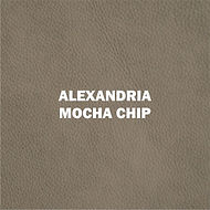 ALEXANDRIA MOCHA CHIP.jpg