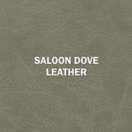 Saloon Dove.jpg