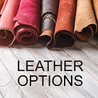 Omnia Leather Options
