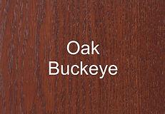 Oak Buckeye.jpg