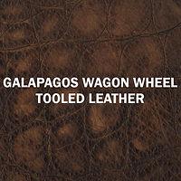 Designer Galapagos Wagon Wheel.jpg