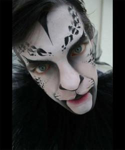 Luke Cat