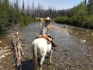 Day 7: Backpacking through Montana