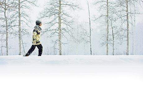 walking in winter.jpg