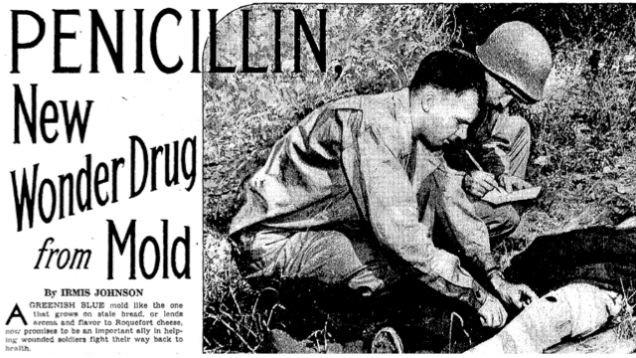 penicillin 2.jpg