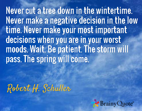 schuller spring quote.png