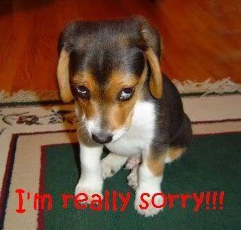 i'm sorry doggy.jpg