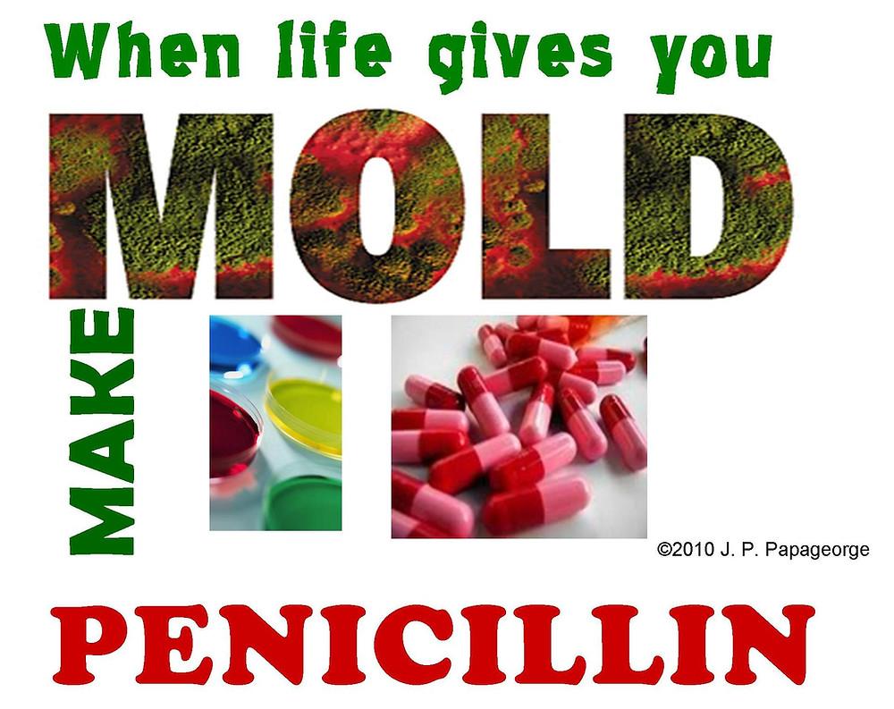 penicillin 3.jpg