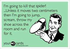 spider notes 2.jpg