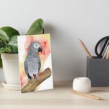 Graupapagei-Poppy-Galeriedruck.jpg