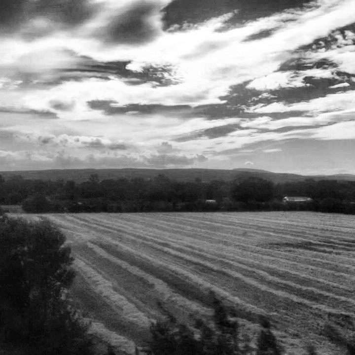 View from Train Window France 2