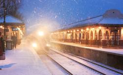 Polar Express NJ