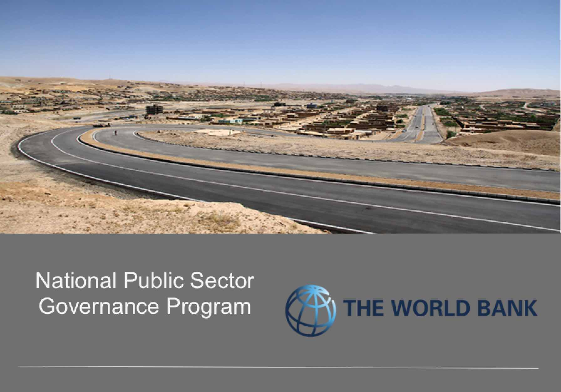 National Public Service Program