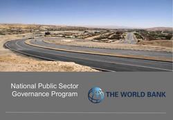 National Public Service Program