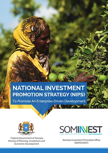Somalia National Investment Strategy Pet
