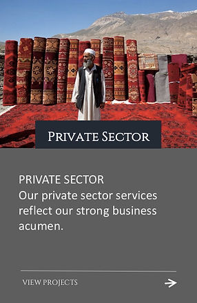 Geopolicity Private Sector Projects