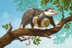 opossums_2.jpg