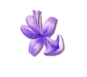 HB_flower4.png