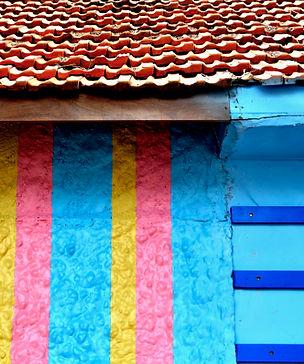 Color cor Paulista Casa Brasileira Carnaval Sao Paulo