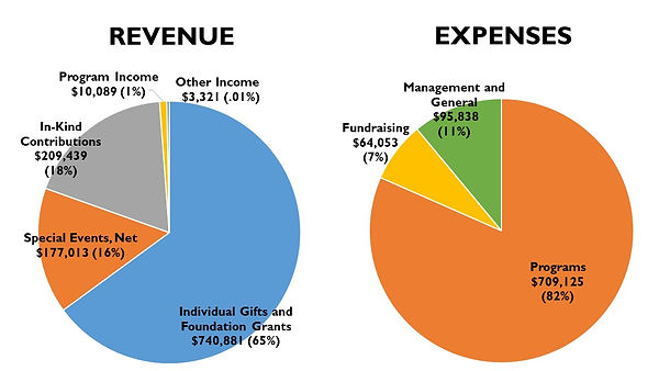 Revenue and Expenses_Updated 1.16.2021.j