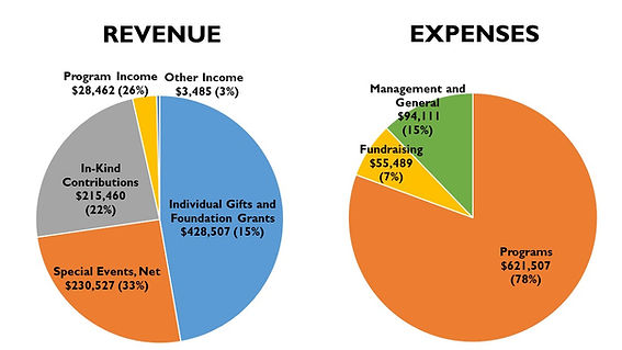 Revenue and Expenses_Updated 2.28.2019.j