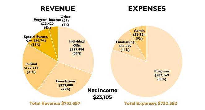 Updated Revenue and Expenses Chart 2.28.