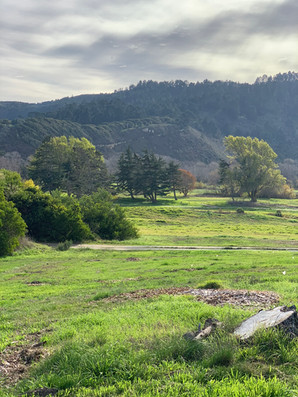 "Former ""Rancho Canada Golf Course"" Habitat Restoration Project"