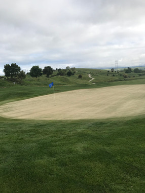 Golf course greens after MYKOS PRO application.