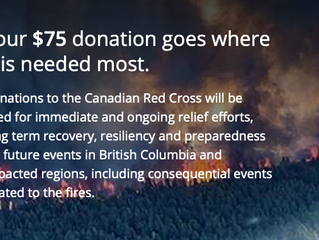 Turn your $1 Fire Donation into $3