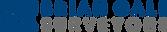 bg_surveyors_logo.png
