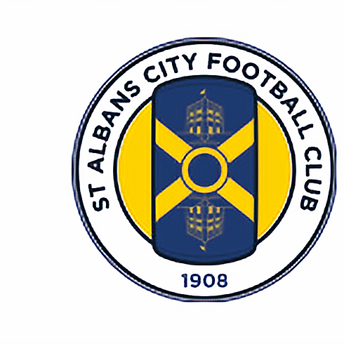 National League South - St Albans Town - Home