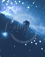 FB_r_pp_Horsehead2.jpg