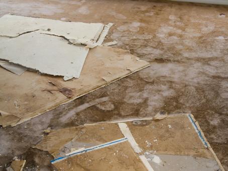 Help! Flooded carpets!