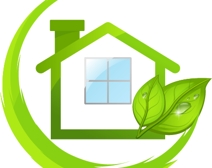 Looking for an Eco-Friendly Carpet Cleaning Service?